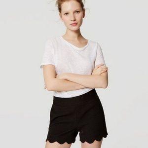 NWT Loft Riviera Scallop Shorts